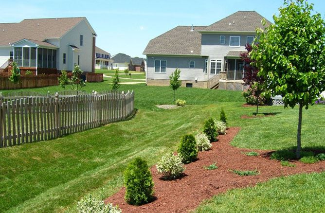 Turfgrass/Landscaping